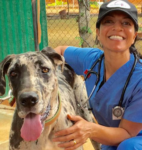 Veterinarian Surgeon Asha Radicic, DVM, Depends on Enova LED Surgical Headlight for World Vets Mission Work