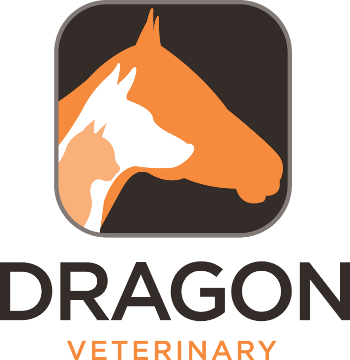 Dragon Veterinary.com